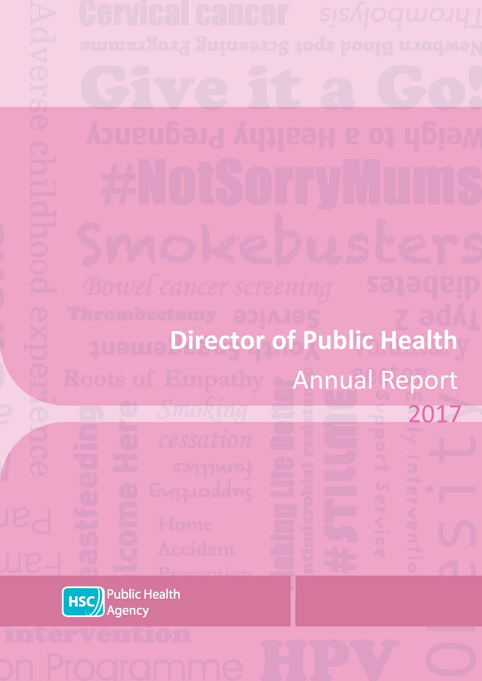 Director of Public Health Annual Report 2017