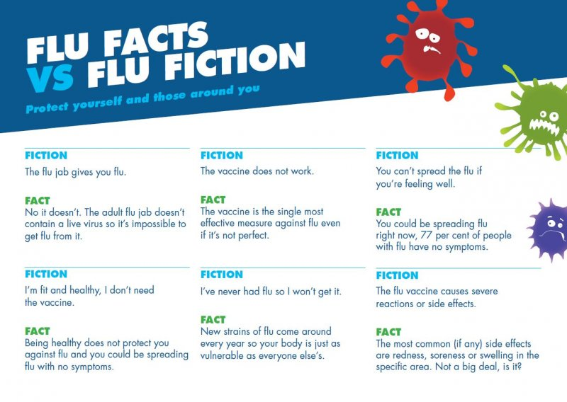 Flu facts vs flu fiction