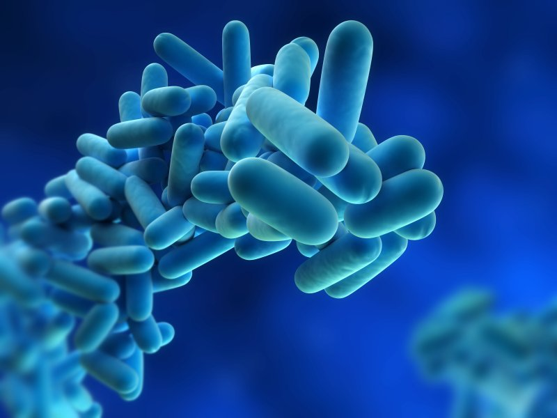 Warning to travellers about Legionnaires cases in Spain