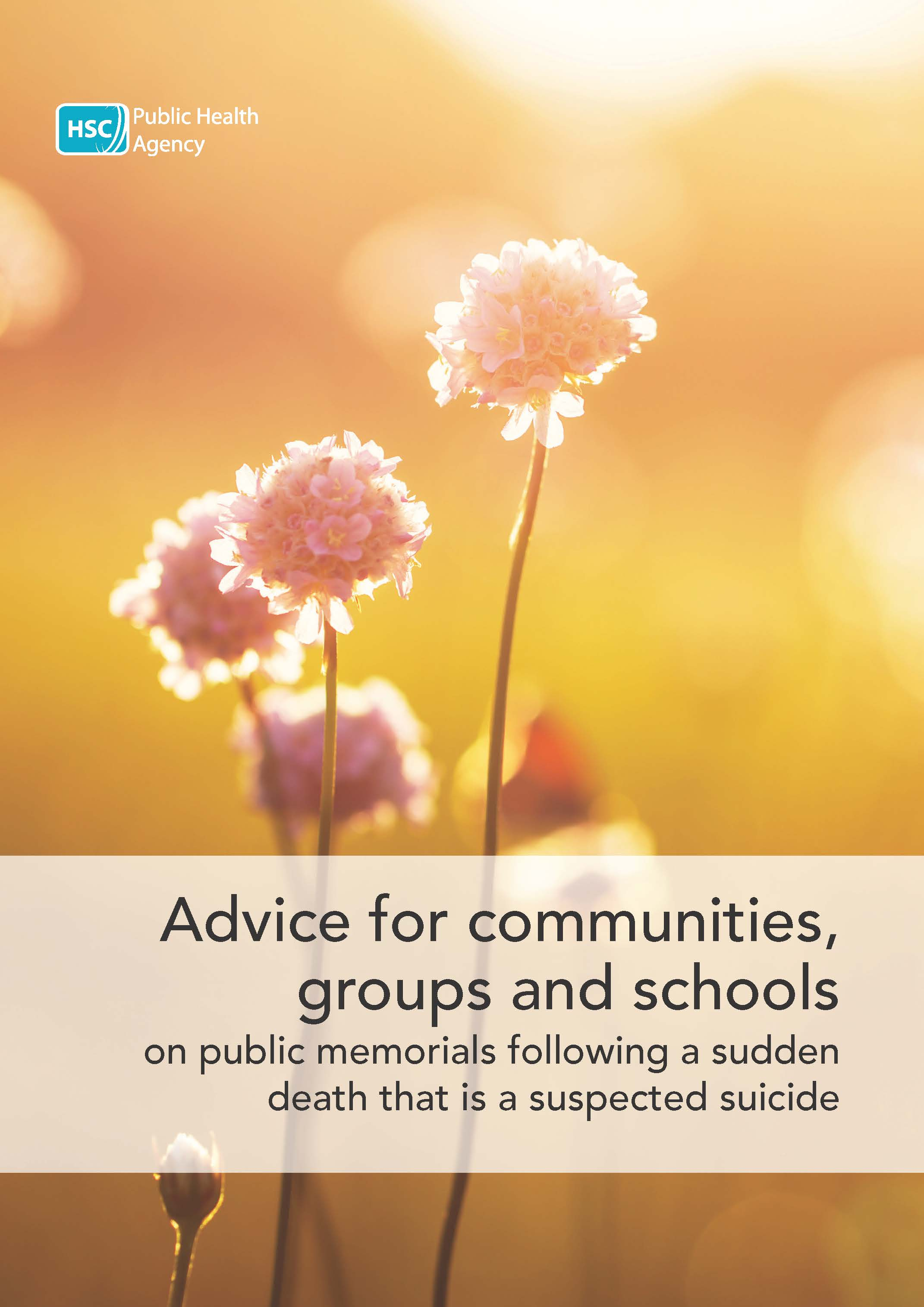 Advice for communities, groups and schools on public memorials