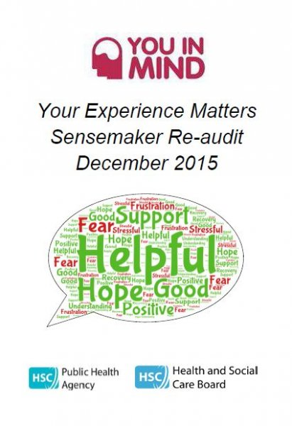 You in mind - 'Your Experience Matters' - Sensemaker re-audit 2015