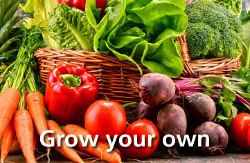 Grow your own vegetables image